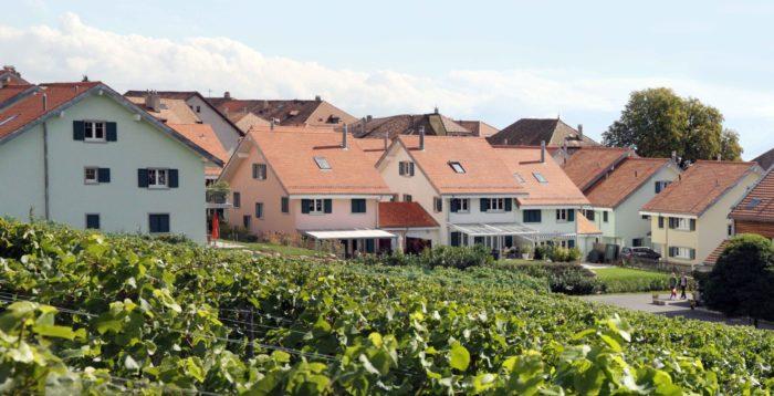 Les Jardins du Village, Etoy